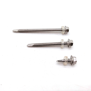 Stainless Steel SS304/A2 Hex Flange Head Self Drilling Screw with Plastic Washer