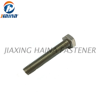 DIN933 ASME B18.2.1 High Quaity Stainless Steel 304 316 316L A2 A4 Hex Bolt